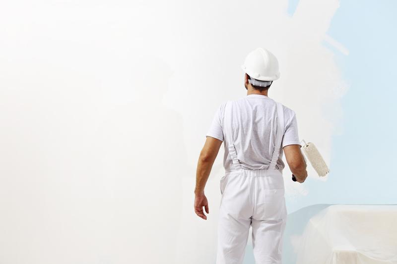 peinture murale peintre