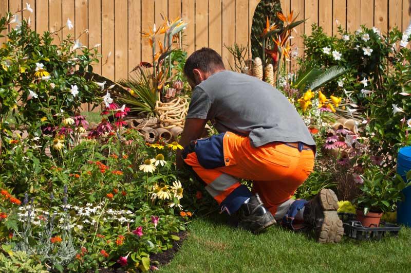 jardinier entretien espace vert