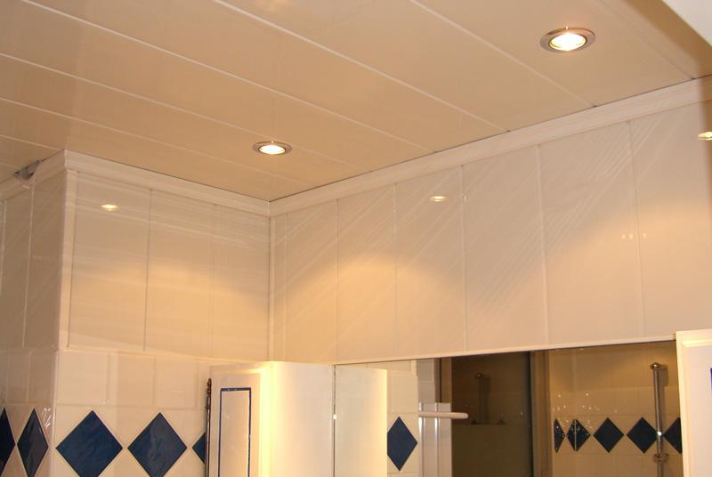 lambris pvc plafond