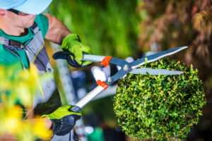 jardinier entreprise espace vert